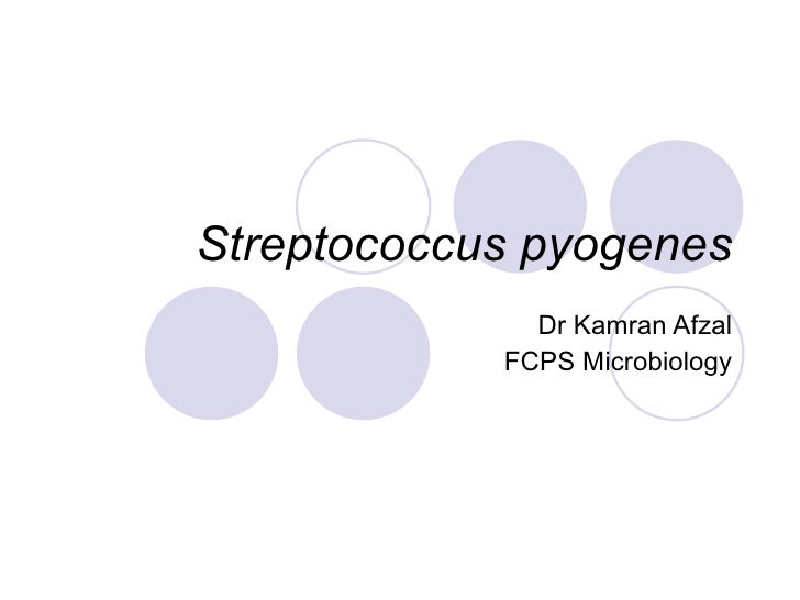 Streptococcus pyogenes Dr Kamran Afzal FCPS Microbiology
