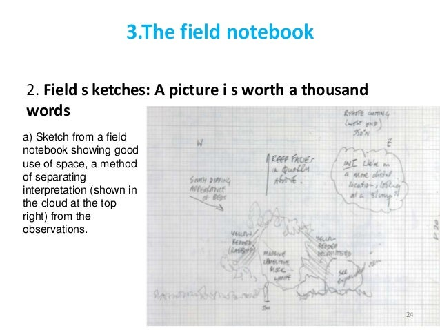 How Do You Write a Field Trip Report?