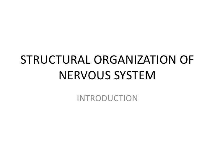 STRUCTURAL ORGANIZATION OF     NERVOUS SYSTEM        INTRODUCTION