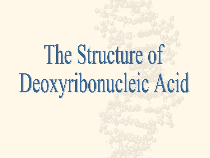 The Structure of Deoxyribonucleic Acid