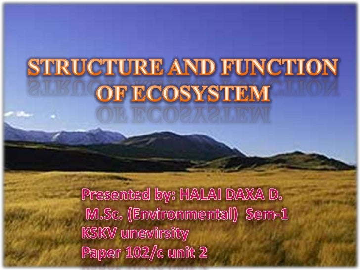STRUCTURE AND FUNCTION OF ECOSYSTEM<br />Presented by: HALAI DAXA D. M.Sc. (Environmental)  Sem-1<br />KSKV unevirsity<br ...