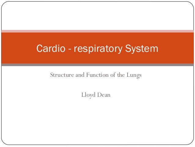 Cardio - respiratory System Structure and Function of the Lungs Lloyd Dean