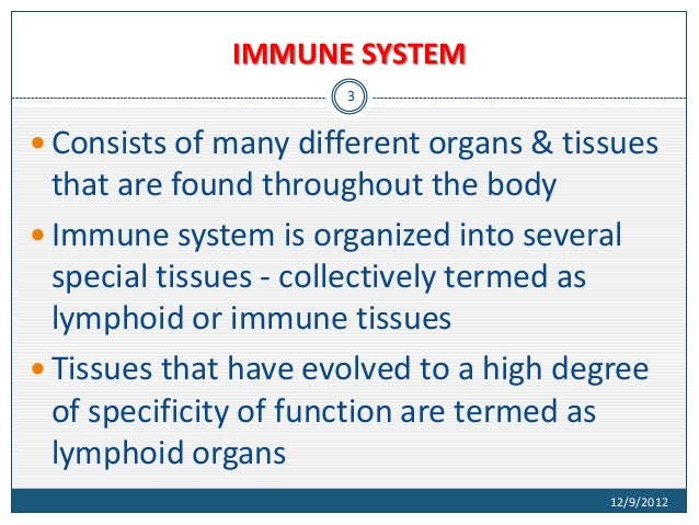 Arbeitsblatt 3 Immunsystem Iii : Structure and functions of immune system
