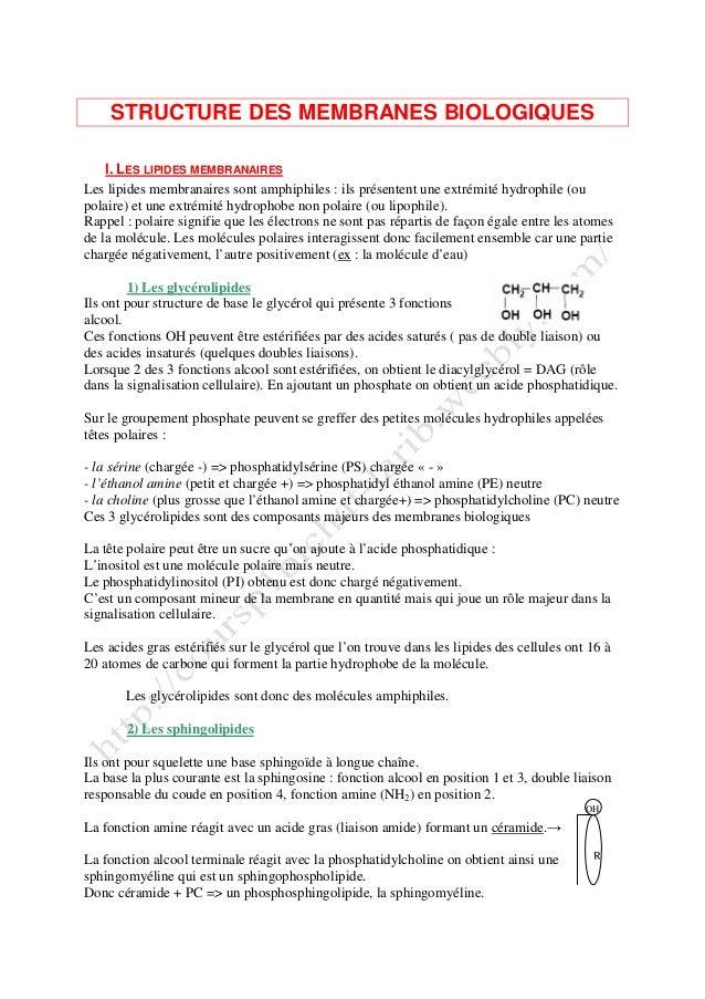 STRUCTURE DES MEMBRANES BIOLOGIQUES I. LES LIPIDES MEMBRANAIRES Les lipides membranaires sont amphiphiles : ils présentent...