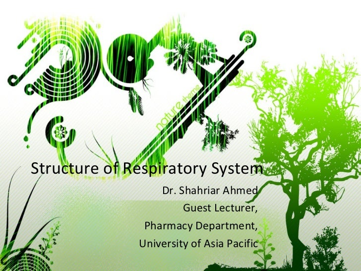 Structure of Respiratory System Dr. Shahriar Ahmed Guest Lecturer, Pharmacy Department, University of Asia Pacific