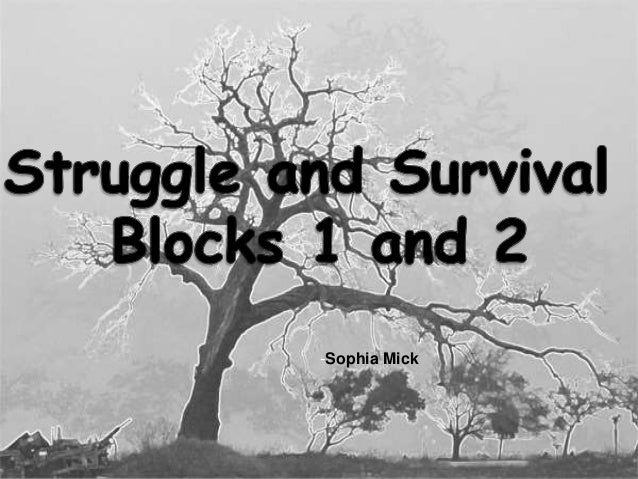 Struggle and Survival Blocks 1 and 2