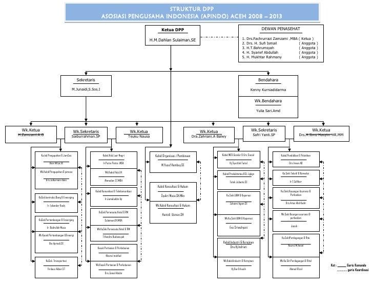 Structure DPP APINDO 208-2013