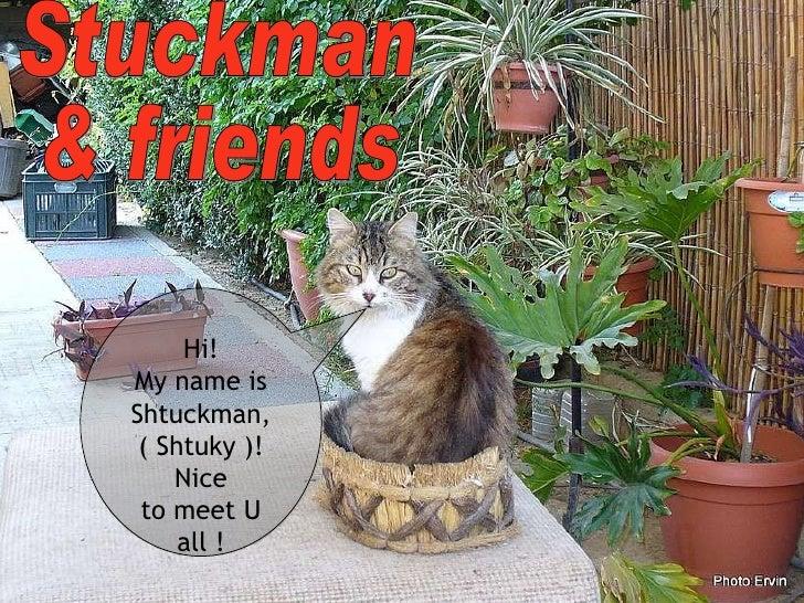Stuckman  & friends Hi! My name is Shtuckman, ( Shtuky )! Nice to meet U all !