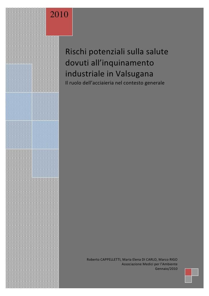 2010       Rischi potenziali sulla salute    dovuti all'inquinamento    industriale in Valsugana    Il ruolo dell'acciaier...