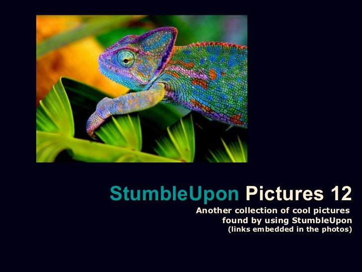 Stumble upon pictures 12
