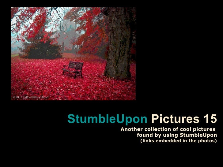 Stumble upon pictures 15