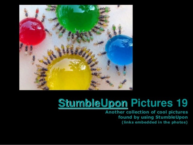 StumbleUpon Pictures 19        Another collection of cool pictures             found by using StumbleUpon              (li...