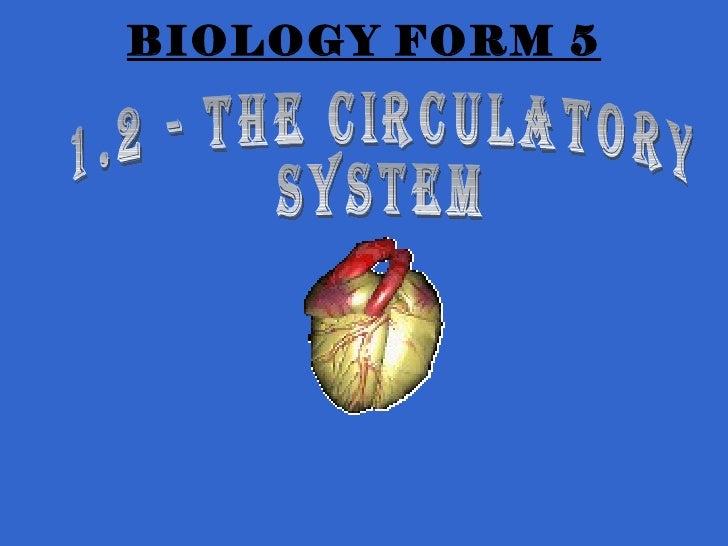 Sub 1[1].2   form 5