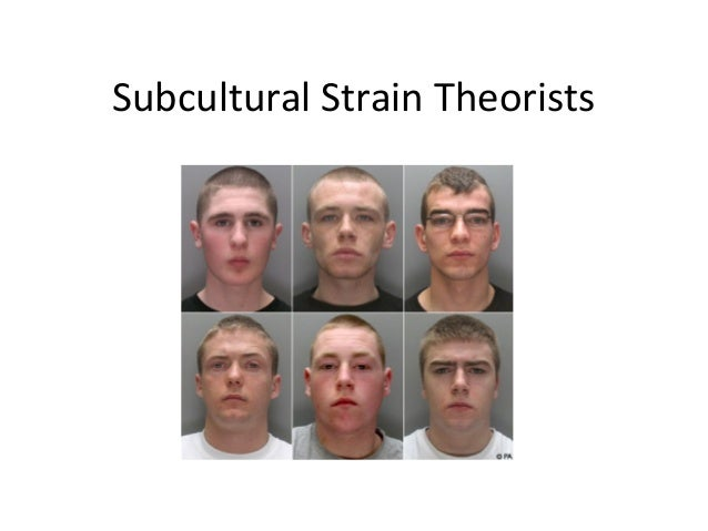 Subcultural strain theorists l1