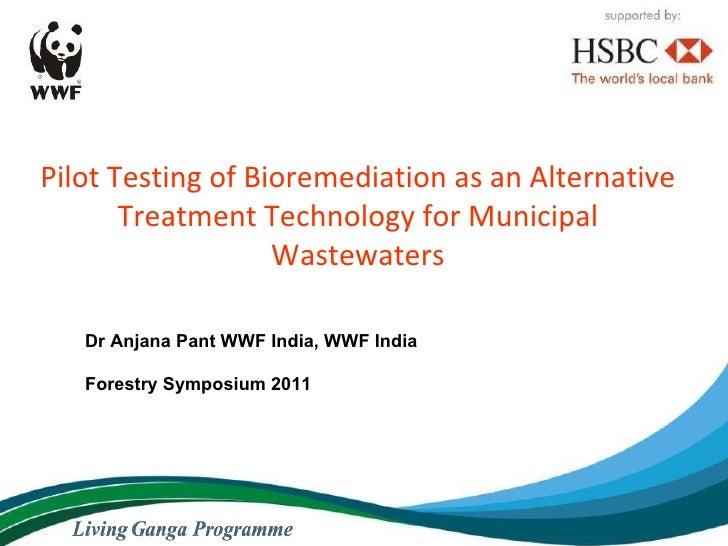 Pilot Testing of Bioremediation as an Alternative Treatment Technology for Municipal Wastewaters