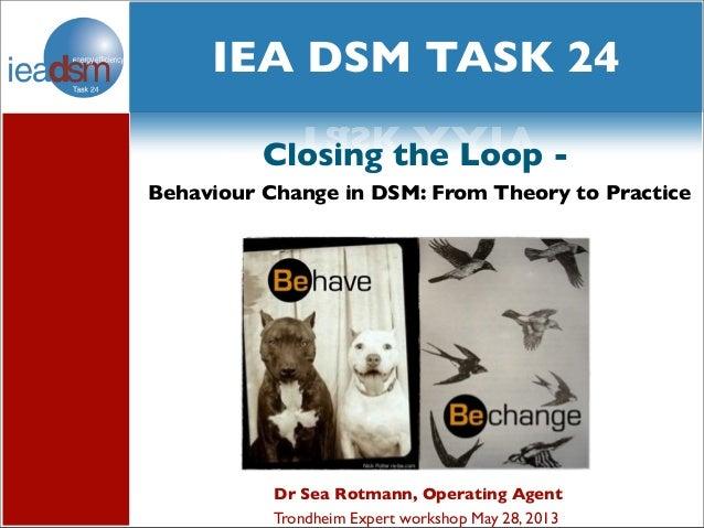 Sea Rotmann IEA DSM Task 24 workshop Subtask 2 case studies