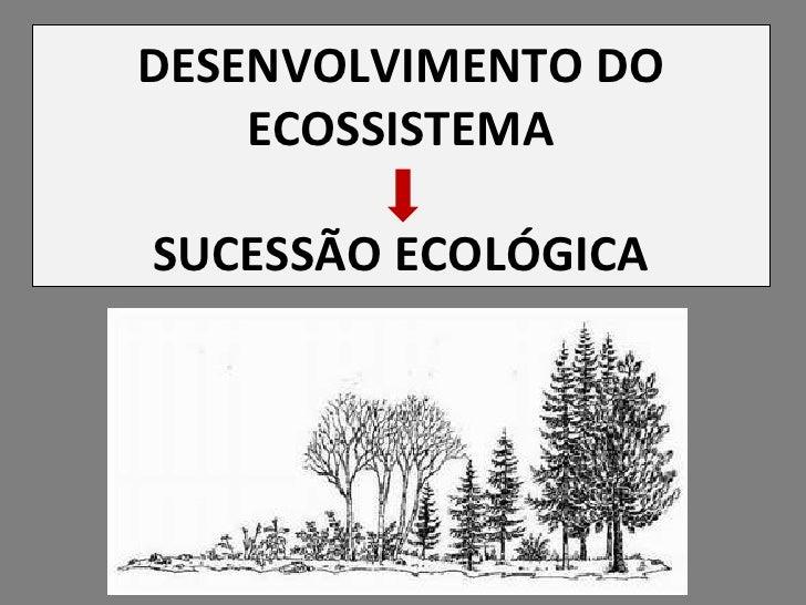 DESENVOLVIMENTO DO ECOSSISTEMA SUCESSÃO ECOLÓGICA