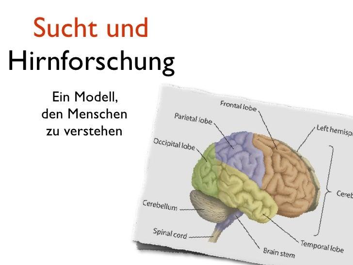 Sucht und Hirnforschung     Ein Modell,   den Menschen    zu verstehen