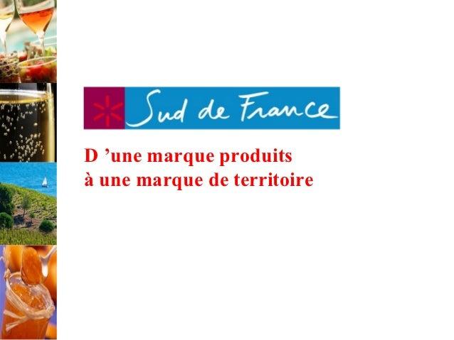 Définir une stratégie : regards croisés sur la démarche Sud de France - Journée marketing territorial Cap'Com