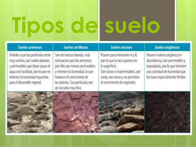 Suelo - Tipos de suelos para casas ...