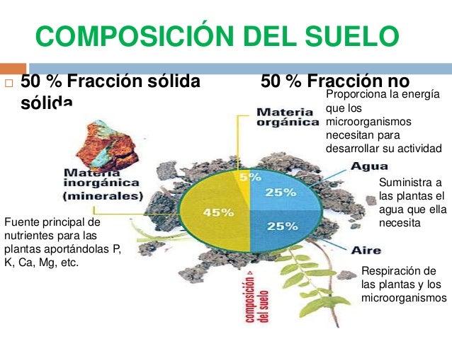 El suelo componentes propiedades composicion for Componentes quimicos del suelo