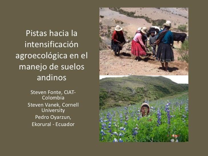 Pistashacia la intensificaciónagroecológica en el manejo de suelosandinos<br />Steven Fonte, CIAT-Colombia<br />Steven Van...