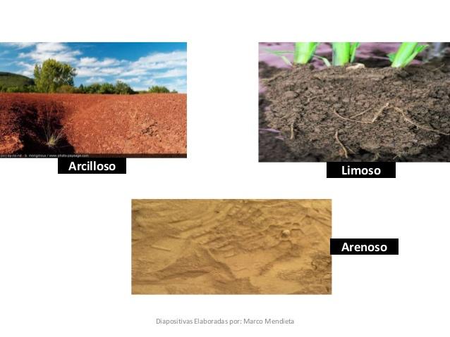suelos-2-638.jpg?cb=1418773550