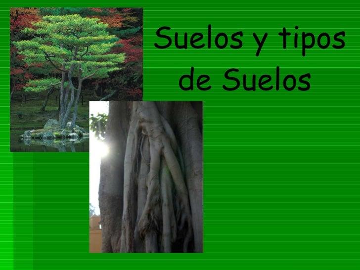 Suelos y tipos de suelos for Tipo de suelo 1