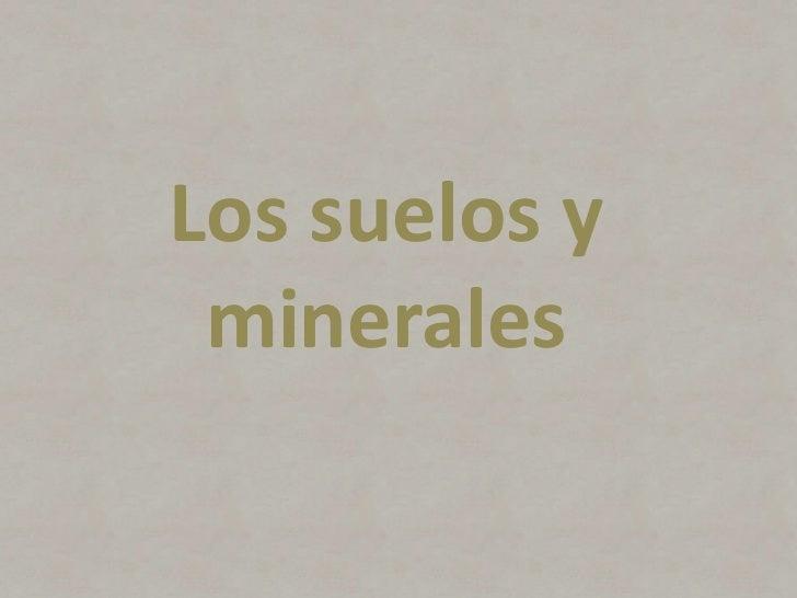 Los suelos y minerales