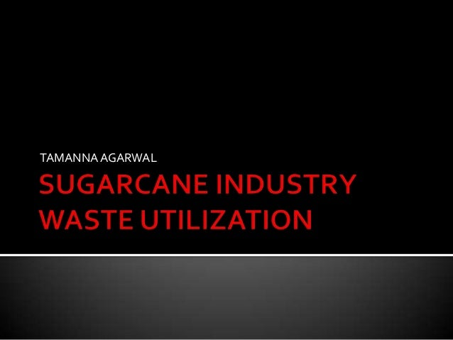 Sugarcane industry waste utilization