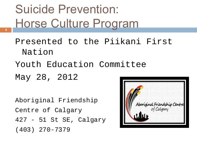 Suicide Prevention for At-risk Youth via a Horse Culture Program