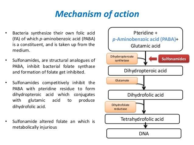 Biochimica et Biophysica Acta  ScienceDirectcom