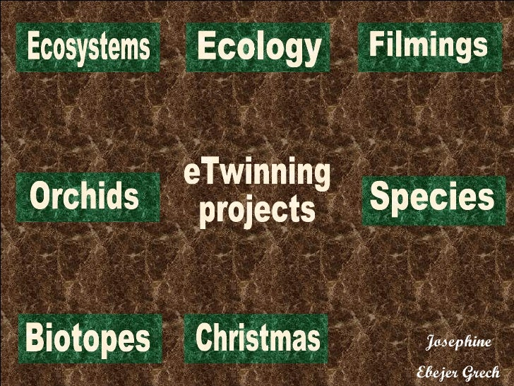 eTwinning projects Orchids Biotopes Christmas Ecology Species Ecosystems Filmings