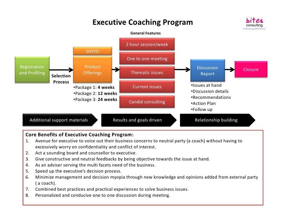 Summary Executive Coaching Program