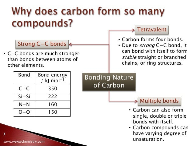 Essay writing on environmental issues image 4