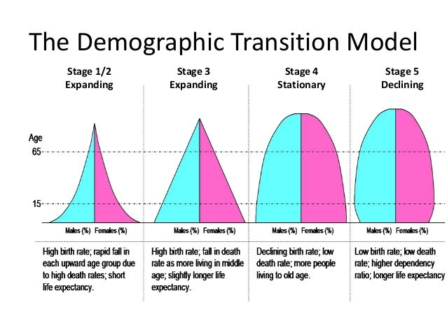 transition stages of a group Stages of group development bruce tuckman (1965) developed a 4-stage model of group development he labelled the stages, dr suess-style: 1 forming: the group comes together and gets to initially know one other and form as a group.