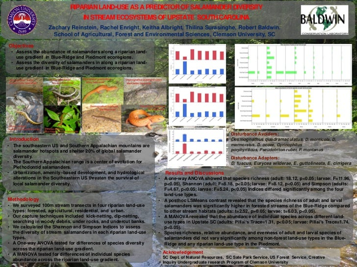 RIPARIAN LAND-USE AS A PREDICTOR OF SALAMANDER DIVERSITY                                  IN STREAM ECOSYSTEMS OF UPSTATE ...