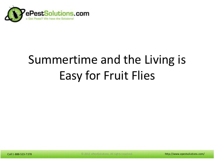Summertime and the Living is                    Easy for Fruit FliesCall 1-888-523-7378      © 2012 ePestSolutions. All ri...