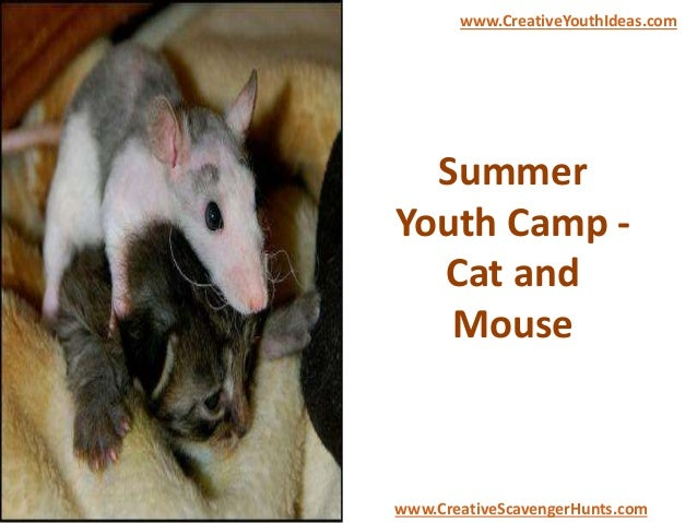 Summer Youth Camp - Cat and Mouse www.CreativeYouthIdeas.com www.CreativeScavengerHunts.com