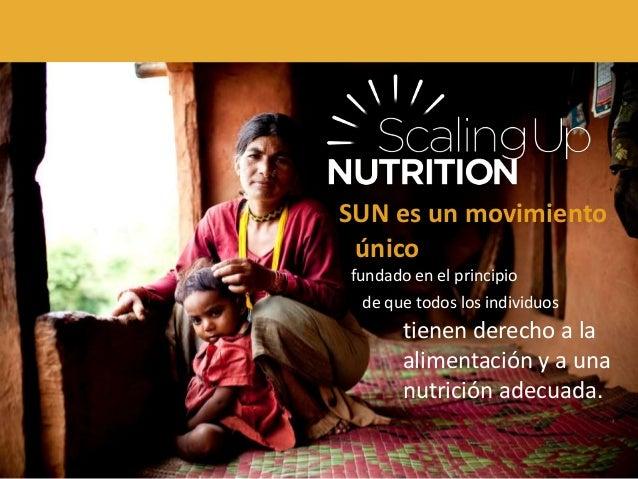 SUN es un movimiento único fundado en el principio de que todos los individuos tienen derecho a la alimentación y a una nu...