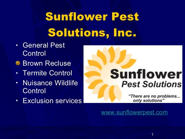 Sunflower Pest Solutions, Inc. <ul><li>General Pest Control </li></ul><ul><li>Brown Recluse </li></ul><ul><li>Termite Cont...
