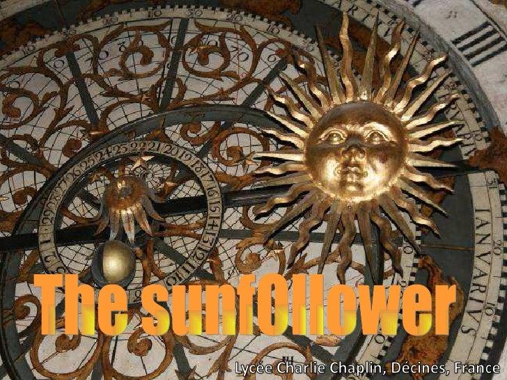 Sunfollower Eng