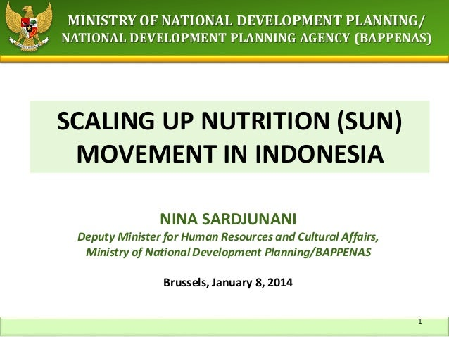 MINISTRY OF NATIONAL DEVELOPMENT PLANNING/ NATIONAL DEVELOPMENT PLANNING AGENCY (BAPPENAS) SCALING UP NUTRITION (SUN) MOVE...