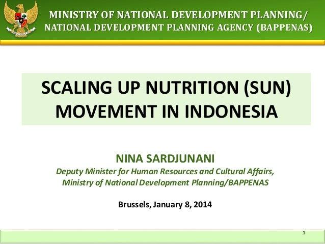 Sun movement in indonesia   brussels nutrition seminar