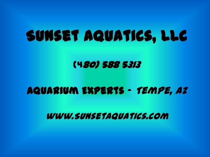Sunset Aquatics, LLC        (480) 588 5313Aquarium Experts – Tempe, AZ   www.SunsetAquatics.com
