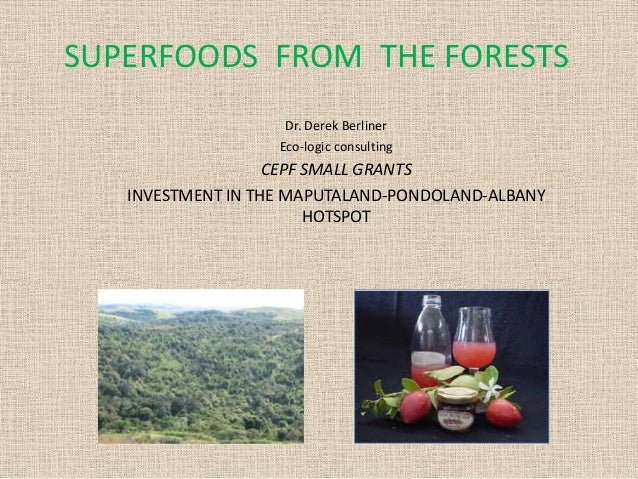 SUPERFOODS FROM THE FORESTS Dr. Derek Berliner Eco-logic consulting  CEPF SMALL GRANTS INVESTMENT IN THE MAPUTALAND-PONDOL...
