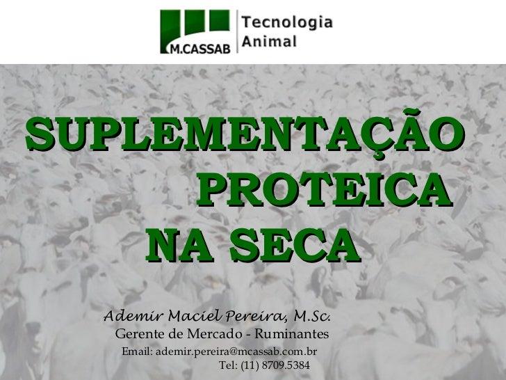 SUPLEMENTAÇÃO     PROTEICA    NA SECA  Ademir Maciel Pereira, M.Sc.   Gerente de Mercado - Ruminantes    Email: ademir.per...