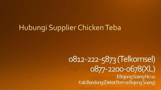 0812-2222-5873 (Tsel) | Supplier Chicken Teba