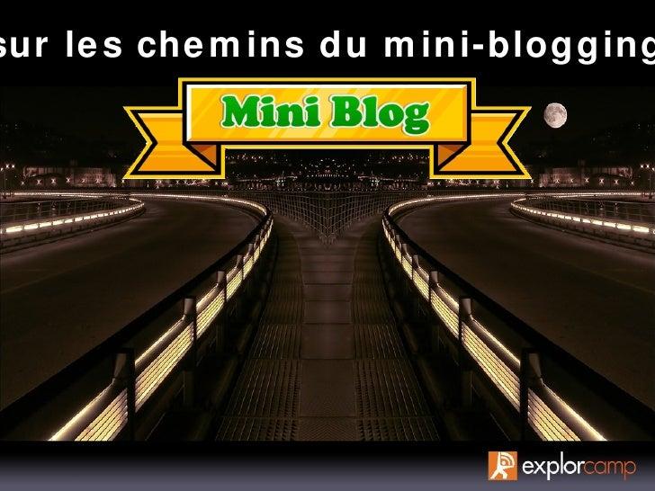 sur les chemins du mini-blogging