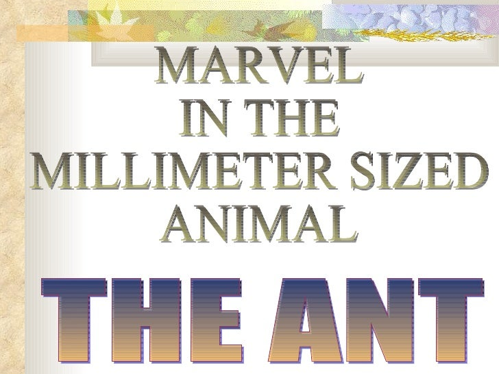 nts- The millimeter-sized animals have an excellent      ability for organization and s pecialization.Ants, which are very...